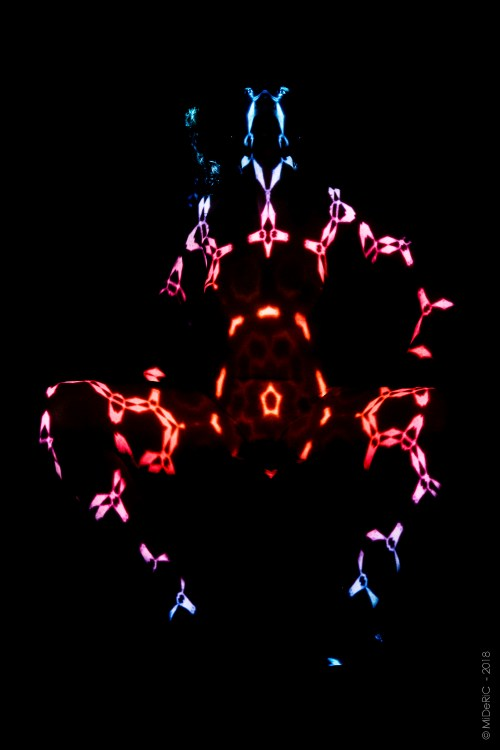 portraits, fine art photography, kinect, projection, map tattoo, body projection, enlighten myths, projection mapping