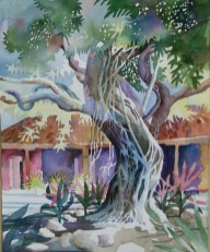 Banyan Tree by Bob Caffrey,oil