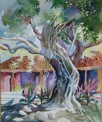 Banyan Tree by Bob Caffrey,oil