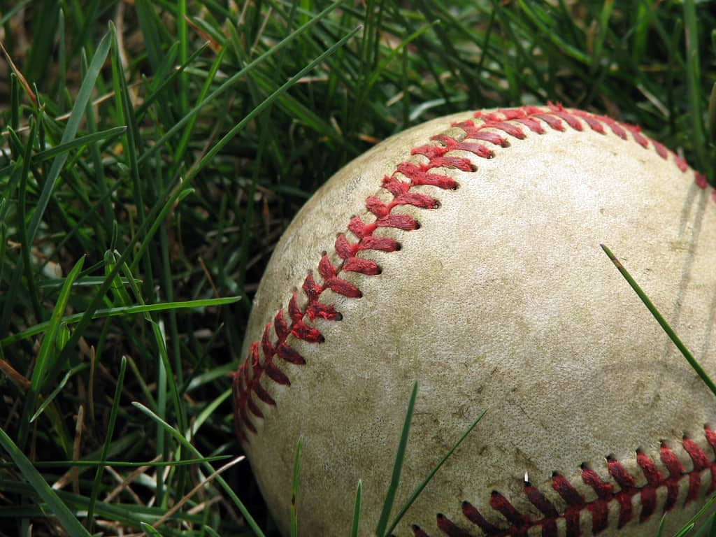 Guest Post Lacking Baseball Specs Leads To Offensive