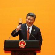 Xi revolution