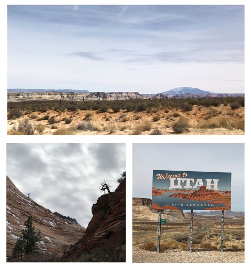 Utah Boarder to Zion Road Trip 4chion lifestyle