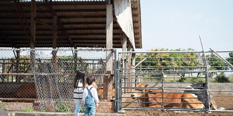 【台南柳營景點】原本想帶小朋友去坐五分車小火車,沒想到沒坐到..意外看到PUI PUI 天竺鼠車車!八老爺車站-乳牛的家