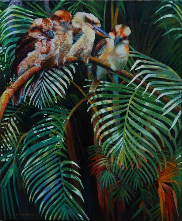 Cookaburra Perch