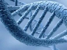 magnetisme-epigenetique