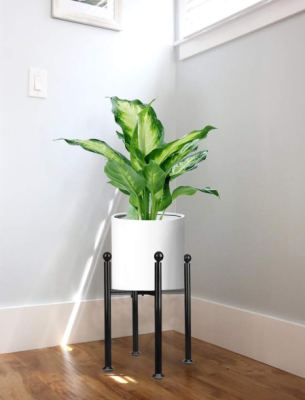 Best Mid-Century Plant Stand Ideas For Your Home on House Plant Stand Ideas  id=93495