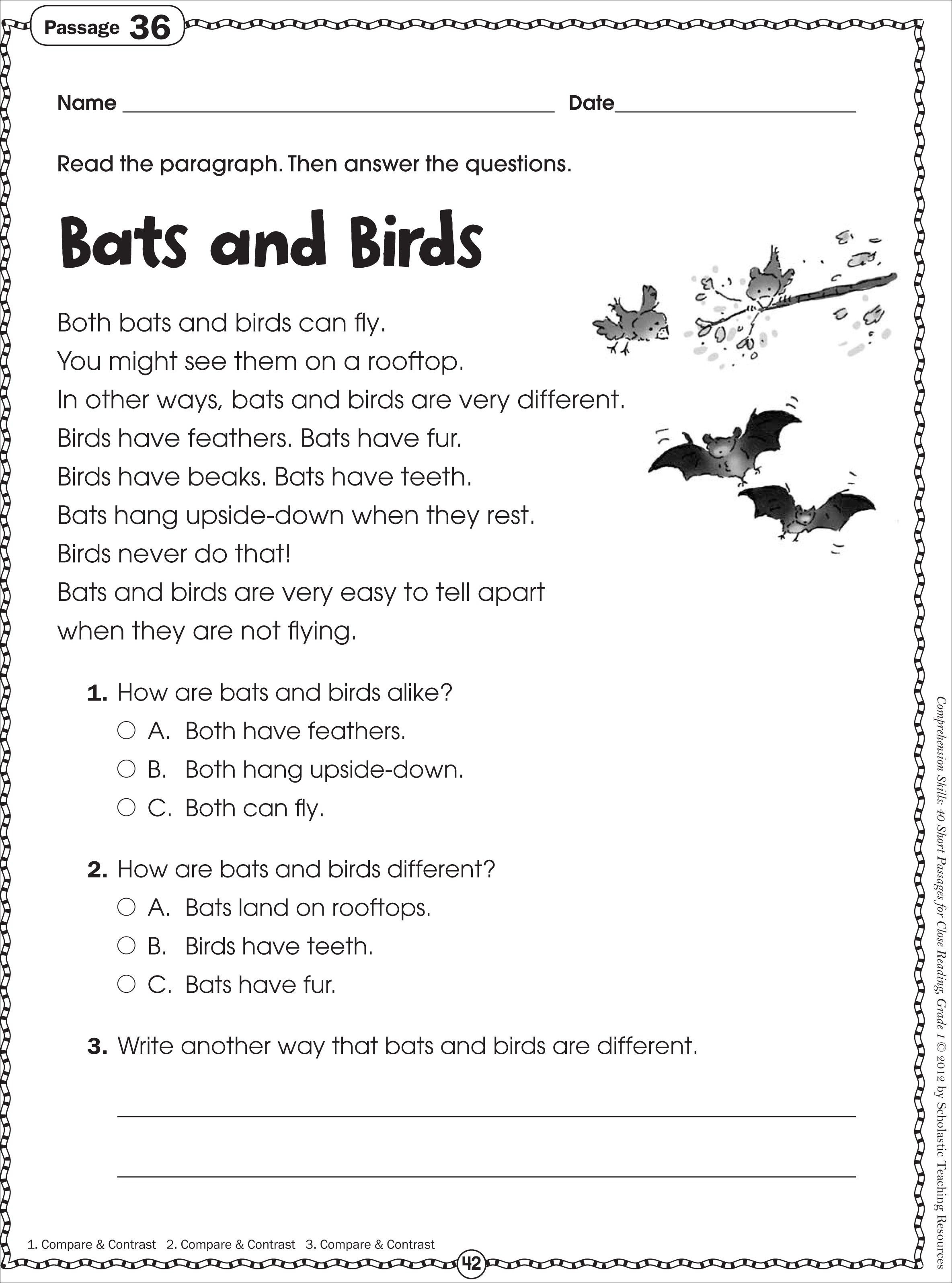 Free Printable Reading Comprehension Worksheet For