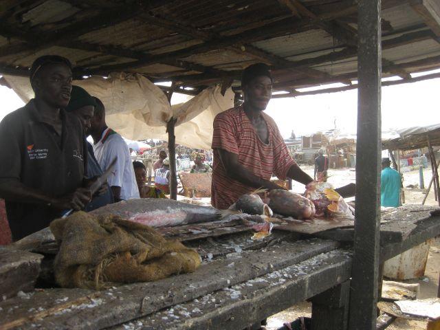 visverkoper Gambia
