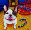 """""""French Bulldog and Rocking Chair"""" Acrylics on Canvas 12""""H x 12""""W x 1.5""""D"""