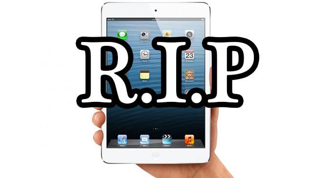 iPad mini rip