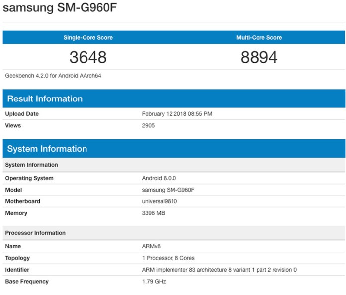 Samsung Galaxy S9 Exynos 9810 variantes