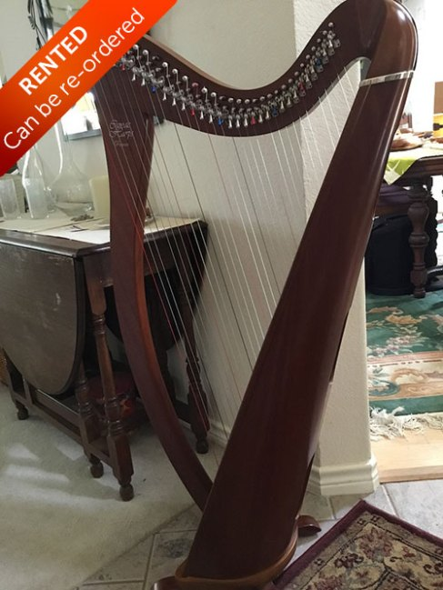 Camac Harp from France for sale back view - Rented with option to buy. Can be re-ordered.