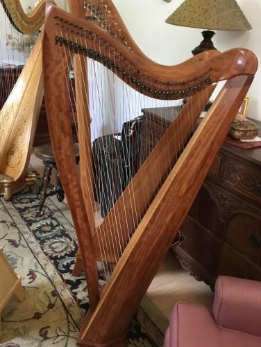 Dusty Strings harp from back