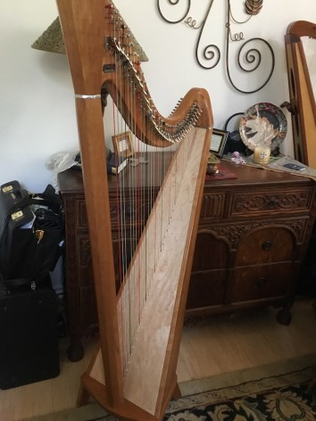 Cherry Pratt Princessa Harp from Back
