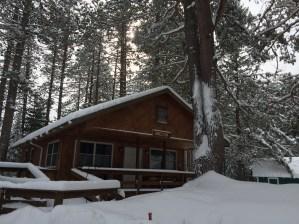 winter-large-1
