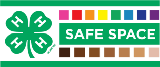 nys_4-h_safe_space_logo_official-final_0