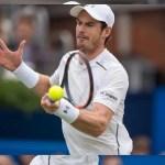 tennis player wallpaper