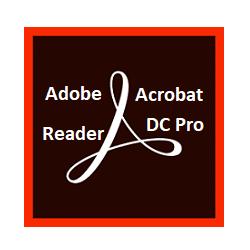 Adobe Acrobat Reader DC 2019.010.20098 With Crack