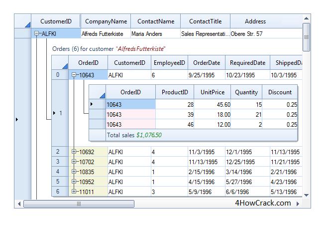 DevComponents DotNetBar Serial Key