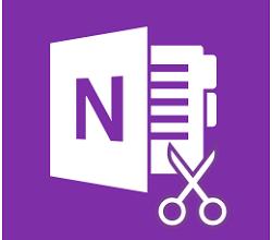 Microsoft OneNote Crack For PC