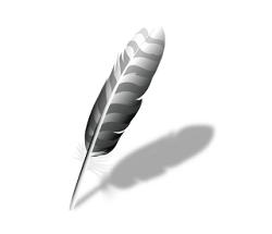 Wing IDE Pro Crack