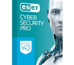 ESET Cyber Security Pro 6.9.200.0 Crack + License Key 2020 Free Download