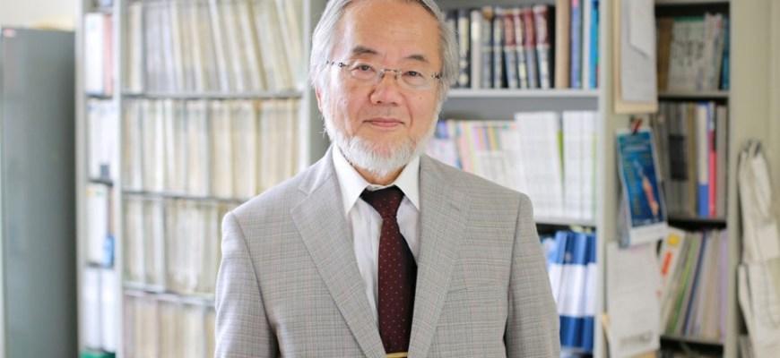 Есинори Осуми