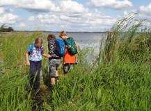 Het Laarzenpad: lopen over drijvend land in Nationaal Park Weerribben-Wieden