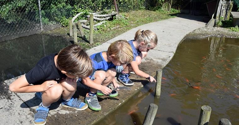 Kinderen ontmoeten bijzondere dieren in Insektenwereld DoeZoo