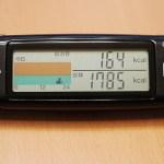 タニタ 活動量計 カロリズムAM-120 を買って、総消費エネルギー量を計測してみる