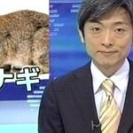 ウナギ!?笑いすぎるので、職場では閲覧要注意!grapee.jp
