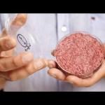 ハンバーグ肉細胞あります!「培養肉ハンバーグ」の衝撃