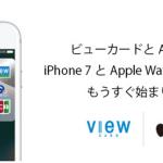 suicaの使えるVIEWカード、ビックカメラで年間¥1以上使うと年会費無料。