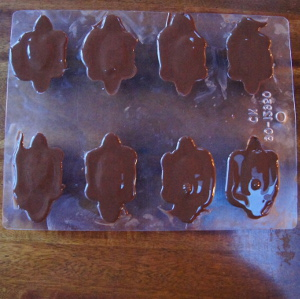 Handmade Chocolate Turtles