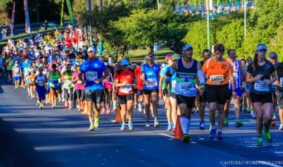 Two Oceans Marathon 2014_-13