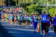 Two Oceans Marathon 2014_-14