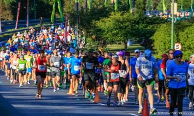 Two Oceans Marathon 2014_-15