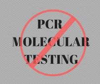 NO PCR MOLECULAR TESTING