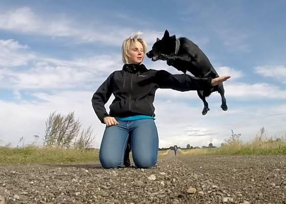 Dog performing trick by jumping over owners arms.