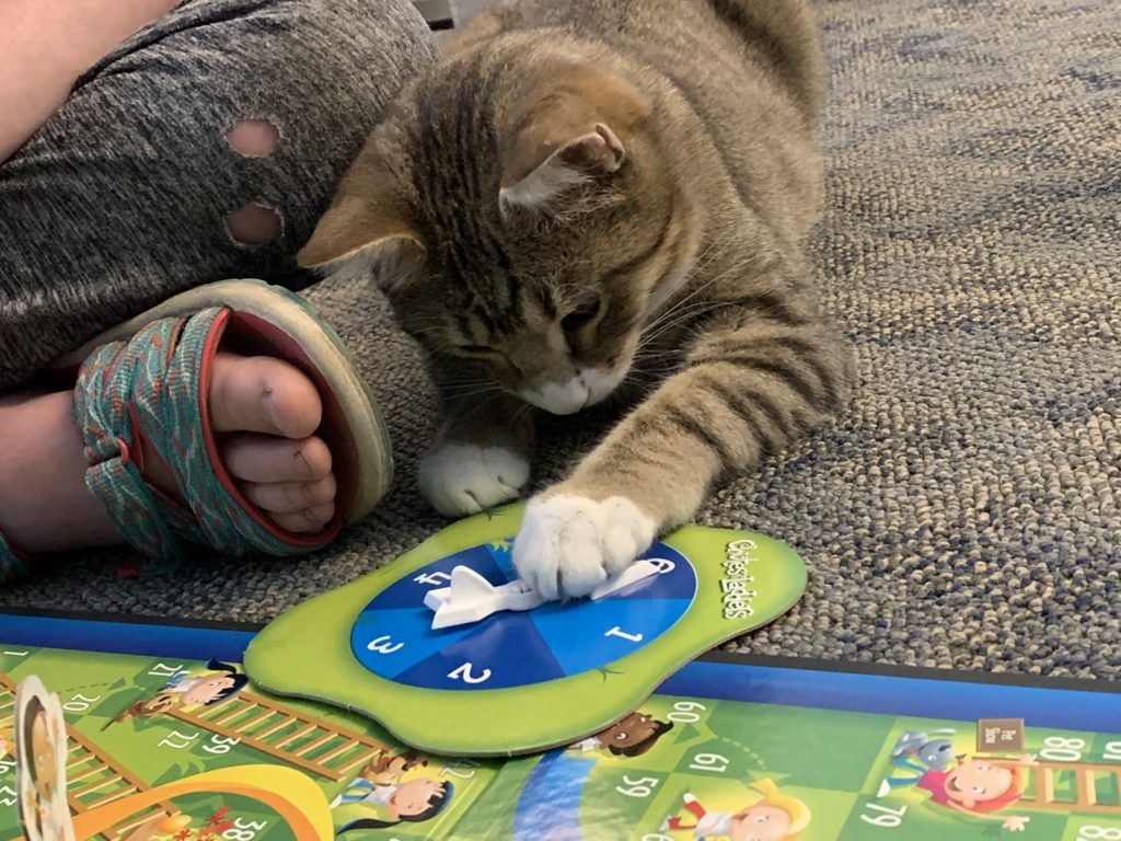 4 Paws Counseling Animals Helping People