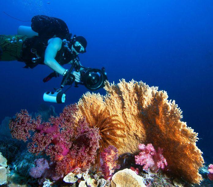 Unterwasservideografie