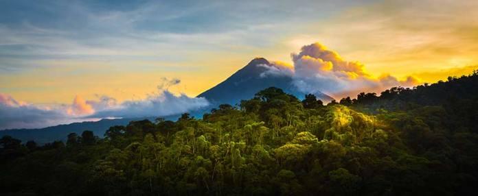Der Regenwald bei Sonnenuntergang
