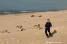 texel-meer-strand