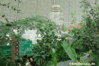 tropical island-freizeitpark-tropenlandschaft