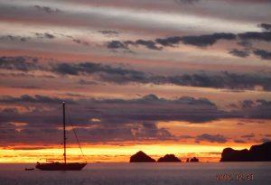 aquaverde-sea-fern-sunrise