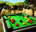 Shaun The Sheep: Pool