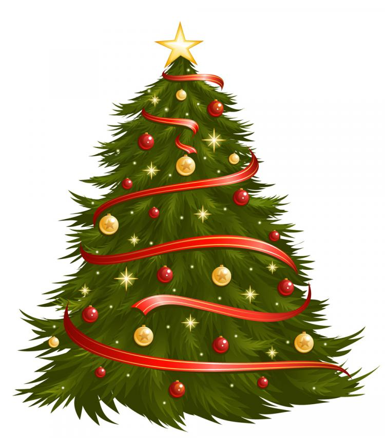 Image result for christmas tree free pictures