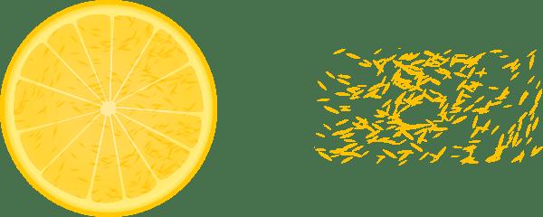 Orange Slice Clip Art (113029) Free SVG Download / 4 Vector