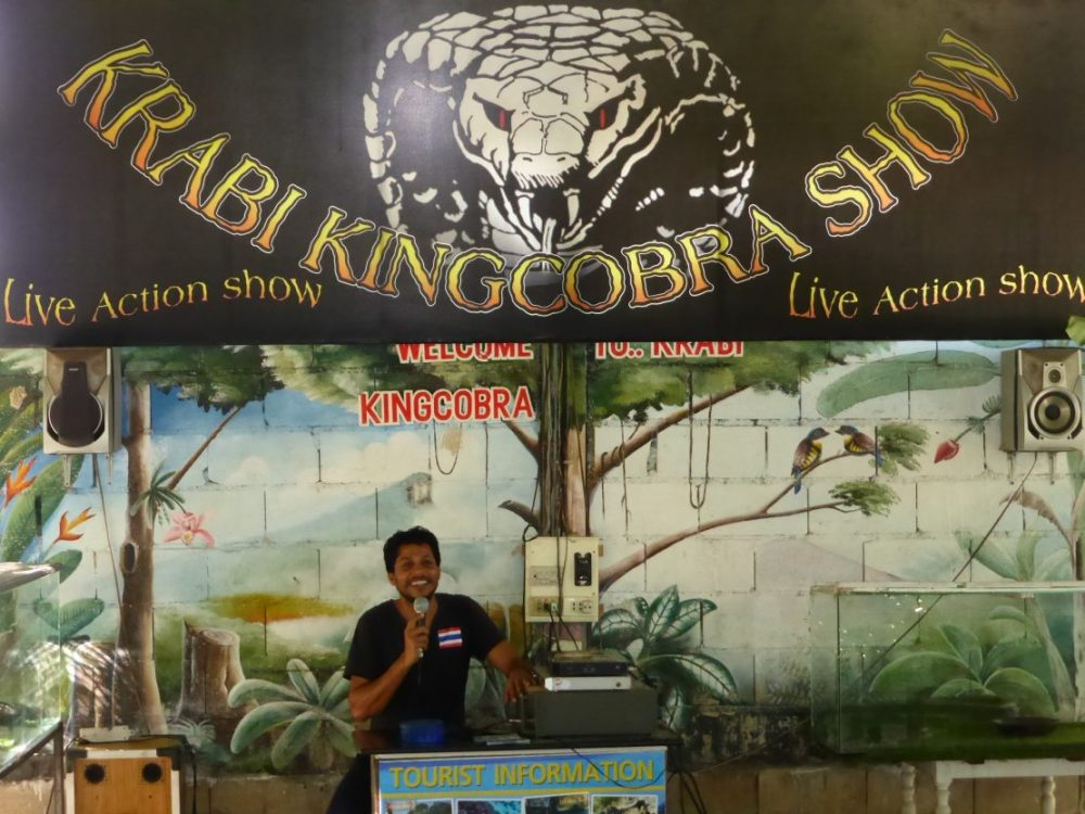 Krabi King Cobra Show