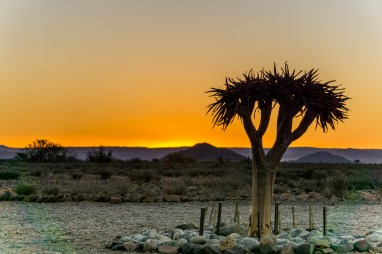 Hoodia Desert Lodge-Photo credit: Rich Baum Photography